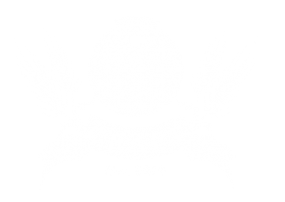 Craft Pizza & Beer